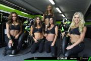 Monster Energy Girls aus Phillip Island