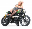 TGS SpeedFreak Custom HD Sportster